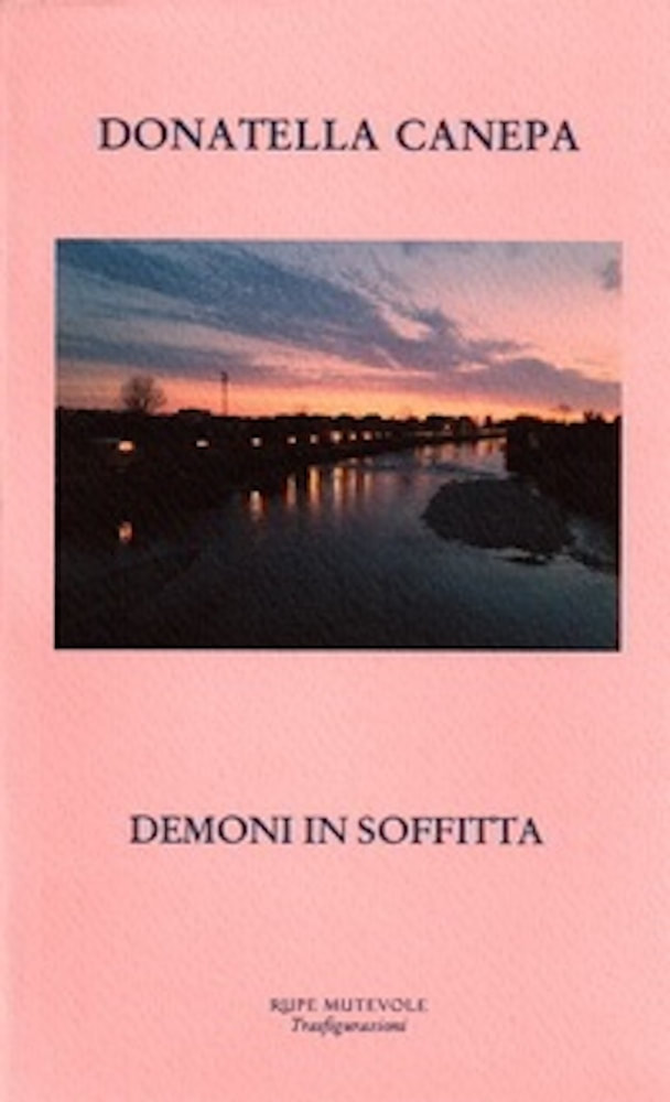 Book: Demoni in soffitta by Donatella Canepa